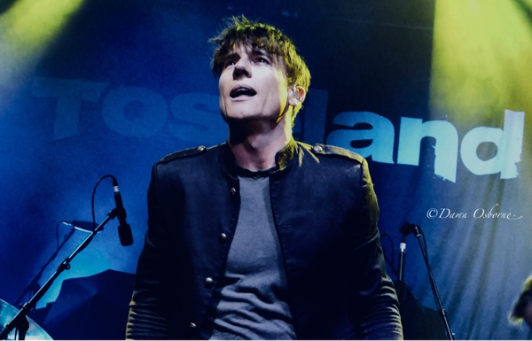 Toseland Live