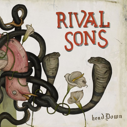 rival-sons-head-down-news